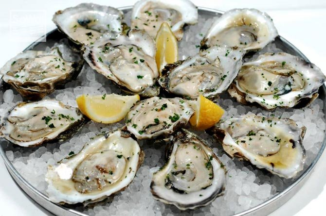 oysters-670