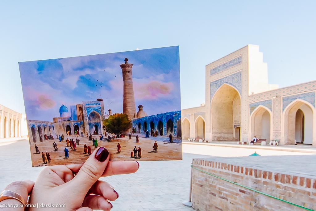 Поехали со мной в Узбекистан в ноябре!