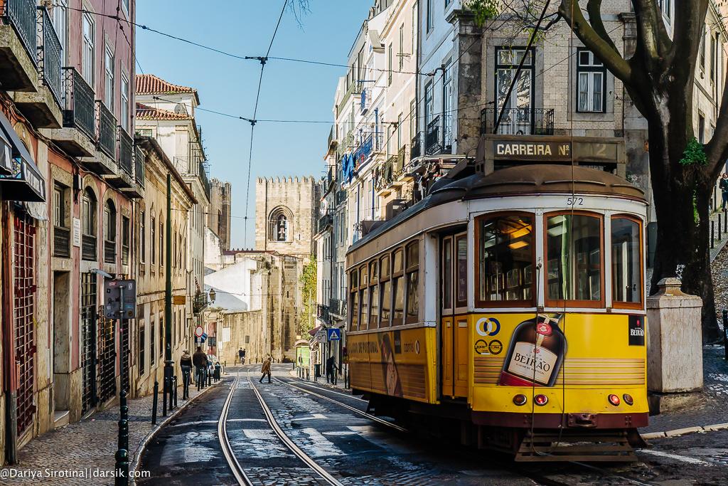 Киошк, винишк и солнышк: какая в Лиссабоне зима